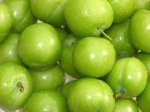 Green or raw tomato